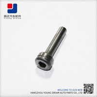 Non-standard parts Satisfied Your Request Auto Fastener And Clip