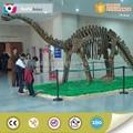 exhibición del museo de dinosaurios de fibra de vidrio