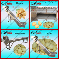 Hot Sale Automatic Potato Chips Used Complete Production Line For Sale