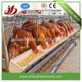 Jaula del pollo coop/la cría de aves de corral pollo jaula sistema/granja de pollo jaula
