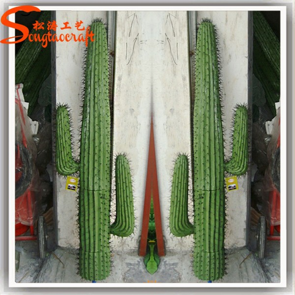 2015 wholesale outdoor grafted cactus plants artificial for Decoration jardin cactus