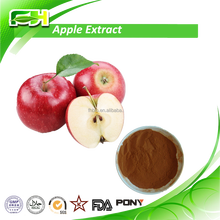 Pure Extract , 100% Natural Dried Apple Extract , High Quality Green Apple Extract