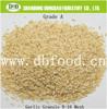 Top Garlic Granule