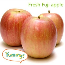Sweet red fresh Fuji apple from China good supplier