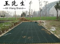 Grass grid paver gravel driving aritificial lawn price with anti UV and strong strength