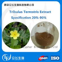 100% Natural and Organic Tribulus Terrestris Extract Powder