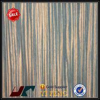 eco-friendly imitation cork floor leather