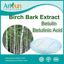 Factory Supply GMP Birch Bark Extract Powder