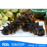 HL011 Rich nutrition Frozen wholesale sea cucumber export