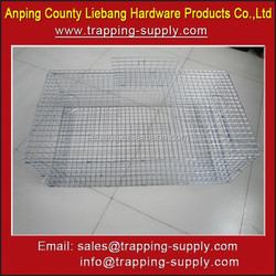 Factory Direct Sales Animal Products Foldable Live Bird Trap Cage for Pigeon & Crow & Magpie