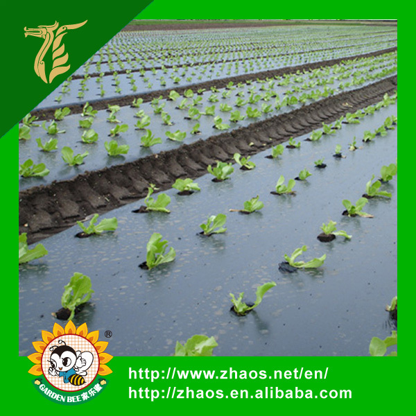 Manafacture PE Material Pre-stretch Perforated UV Resistant Agriculture Film