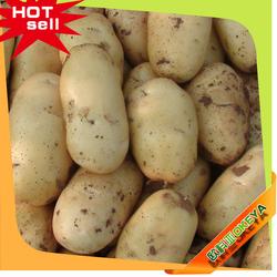 OKEYA Potato