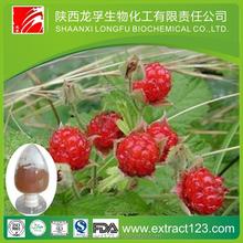 Raspberry extract (Palmleaf Raspberry Fruit Extract)