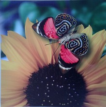 CE Certified 2015 lastest beautiful flower designs fabric painting with led light holiday gift cheap china factory wholesale