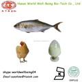 Puro colágeno hidrolisado / peixe colágeno extrato de pó / frango colágeno extrato em pó tipo 2 para bebida de colágeno beleza