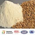 نسبة عالية من البروتين الغذائي الصف القمح الحيوية طحين الغلوتين الحرة