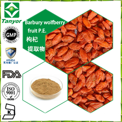 Factory supply Barbury Wolfberry fruit P.E.