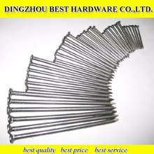 Factory Price Common Wire Nail/common nails