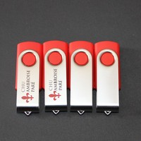 2014 Best Selling OEM Red Color 2GB Bulk USB Flash Drive For Promotional Gift