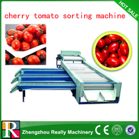 potato sorting machine / apple grading machine / onion sorter