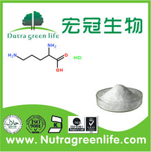 new arrival Best quality L-Ornithine HCL, USP amino acid with good price