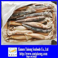 Frozen Illex Squid 200-300G