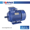 IE2 THREE PHASE INDUCTION MOTOR,HIGH EFFICIENCY MOTORS