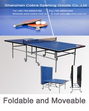 Ideal Family Recreational Use Table Tennis Table