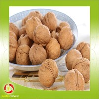 wholesale walnut in shell price in China