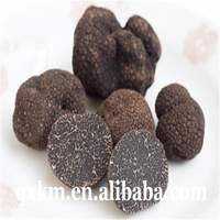 Factory Price Fresh Back Truffle Tuber,Chinese Mushrooms Truffles Product Type and Piece Shape Black Truffle