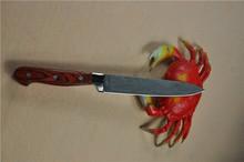 Deer Bone & Rose Wood Handle Hand Made Hunting Knives FLDL-WG0011