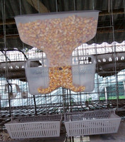 Plastic Pigeon Feeder, New Automatic Pigeon Feeder from China
