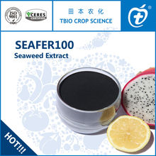 Natural Seaweed Extracts Fertilizer From Blue Green Algae-TBIO SEAFER 100