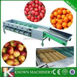 Multi -function round fruit sorting machine for apple ,lemon,mango,onions/fruit and vegetable sorting machine