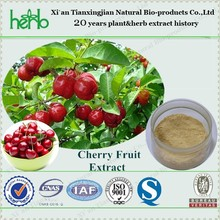 Natural Acerola Cherry fruit Extract Powder Cherry powder Vitamin C 17% HPLC