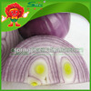 /product-gs/best-selling-red-onions-chinese-onion-exporter-60354275020.html