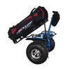 Ce approved smart balance two wheel off road durable adults kids segboard electric scooter