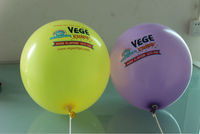 hot sale high quality printed different size dot balloon