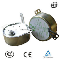 TYJ49 4W AC Synchronous Motor for electric fireplace(TUV, UL)