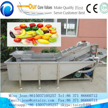 vegetable and fruit washing machine professional washing machine