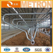 Galvanized cow cattle free stall