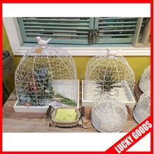 latest design wholesale decorative white fancy bird cages