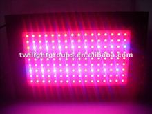 2012 Best High Intensity Cute 8 band 300W LED grow lights for Greenhouse Hydroponics Indoor House