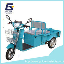 Electric Tricycle With Small Cargo