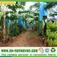agricultural protection cloth, tnt textile for banana cover