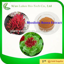 Improving attention and memory 3% Salidroside Rhodiola Rosea Extract