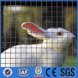 BIRD AND RABBIT FENCE AND DOG FENCE/welded wire mesh(anping manufacturer)