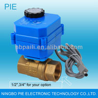 Electric water shut off valve