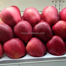 new crop fresh red delicous sweet health Tianshui huaniu apple