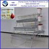 commercial chicken breeding cage /chicken cage for layers (made in China)
